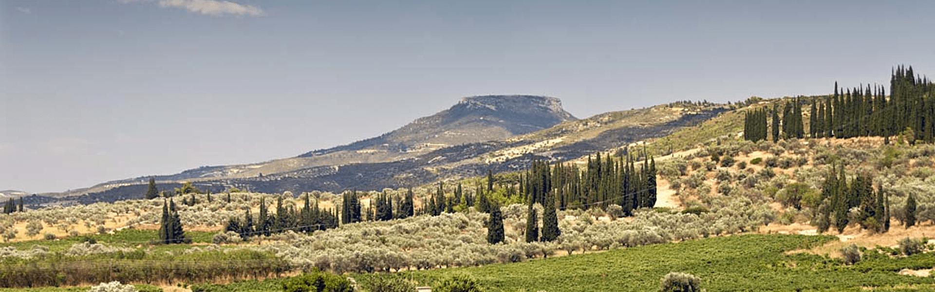 Griekenland | Wandelen over de Menalon Trail