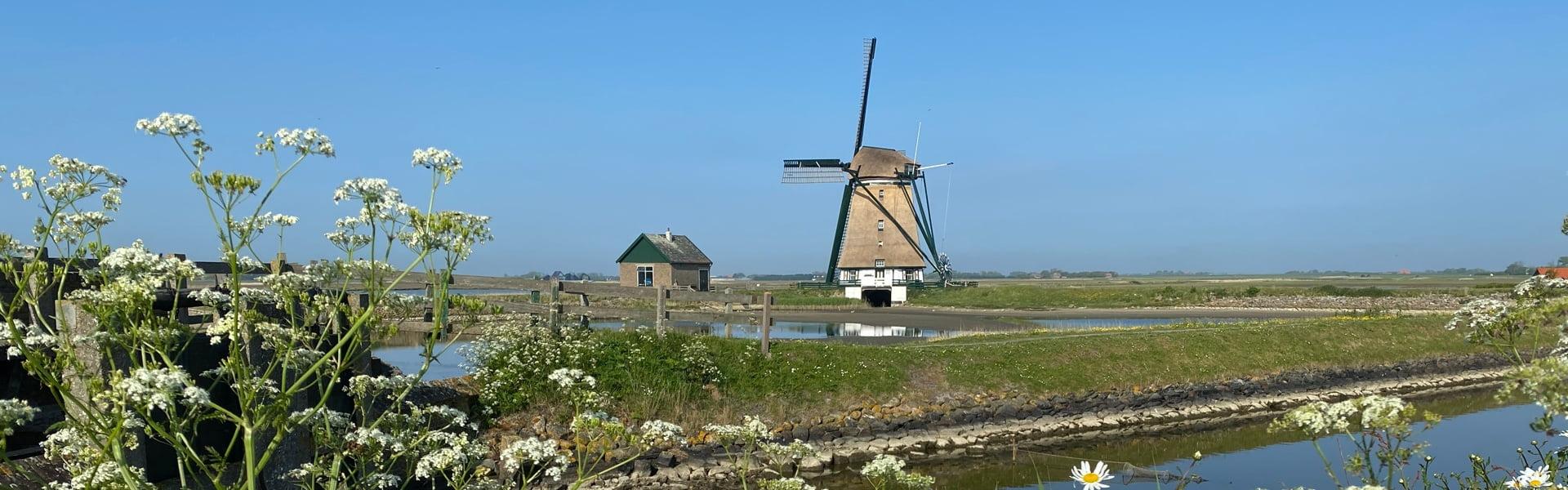 Nederland | Wandelvakantie Texel