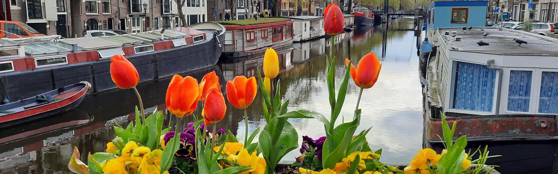 Nederland | Natuurlijk Amsterdam