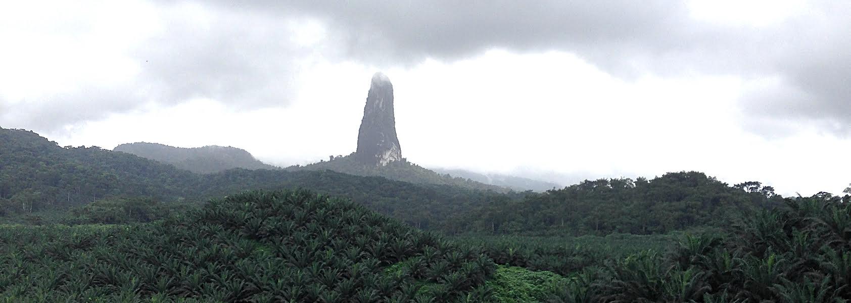 Sao Tomé & Principe | Een vakantie in het paradijs