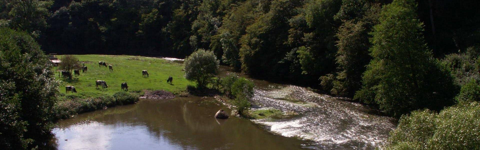 Duitsland   Wandelen in de Eifel over de Matthiasweg – Deel 2
