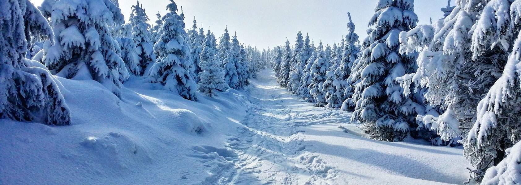 Tsjechië | Actieve langlauf- en sneeuwschoen wandelwinterreis