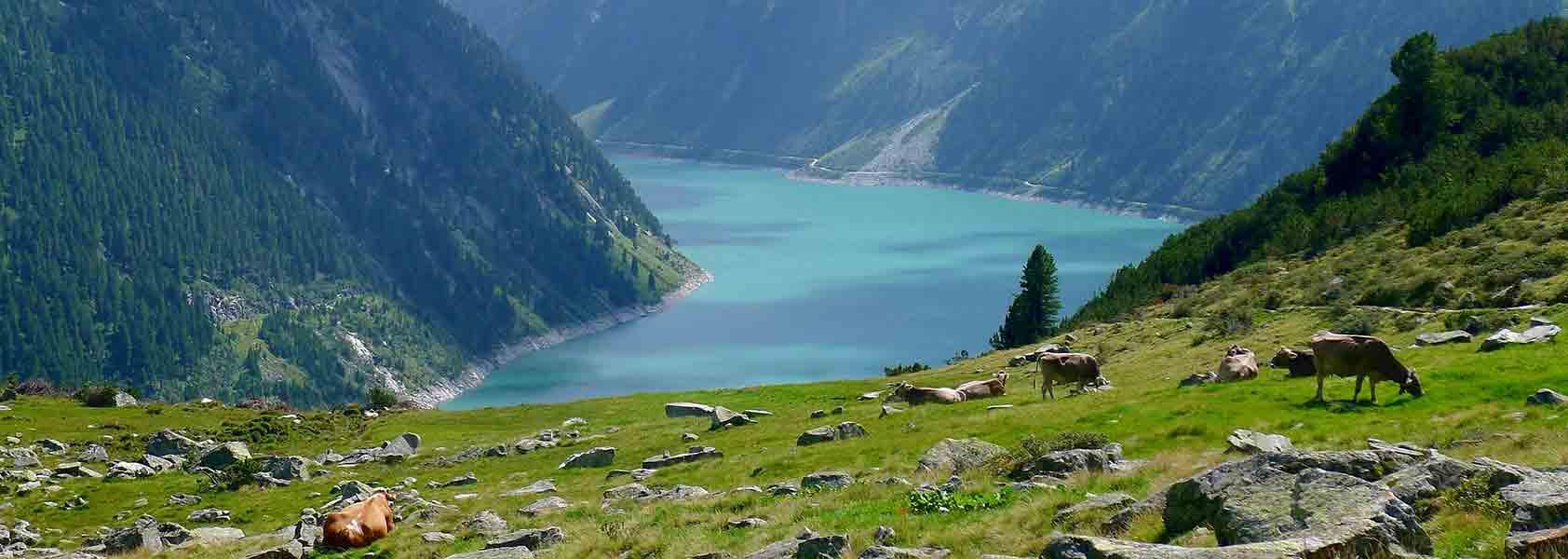 Oostenrijk | Wandelen in Zillertal